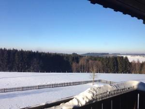 Landgut_Winter_03