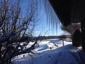 Landgut_Winter_04